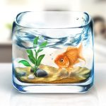 fishbowl_ios
